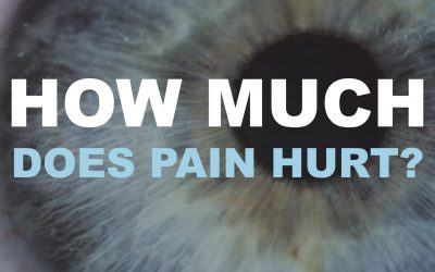 How Much Does Pain Hurt?