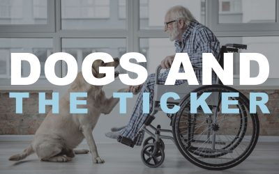 Dogs and the ticker